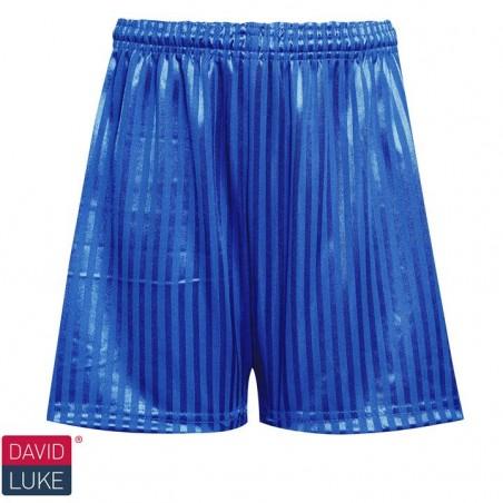 Royal Blue Football Shorts