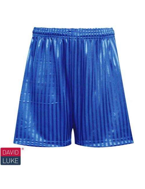 Royal Blue Football Shorts